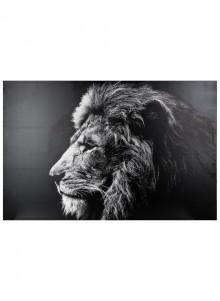 Tablou canvas Lion Black,...