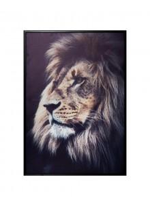 Tablou canvas Lion King,...