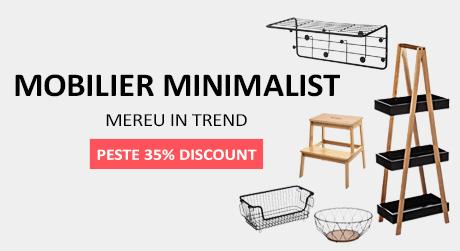 Mobilier Minimalist